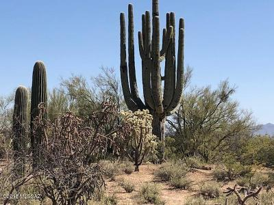 Tucson Residential Lots & Land For Sale: Lambert Lane