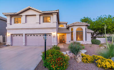 Oro Valley Single Family Home Active Contingent: 11048 N Cloud View Place