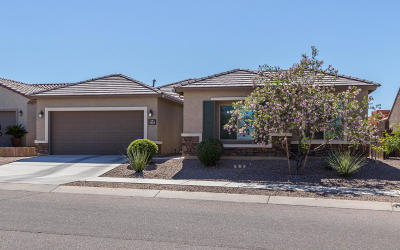 Single Family Home Active Contingent: 5660 S Braided Wash Drive