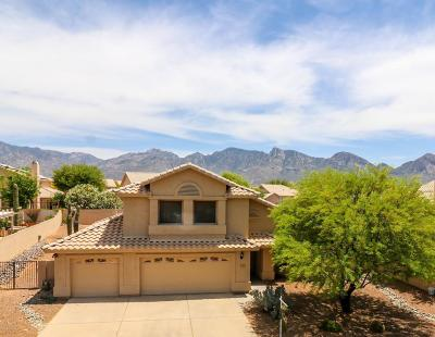 Oro Valley Single Family Home For Sale: 12506 N Granville Canyon Way