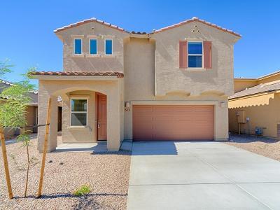 Sahuarita Single Family Home For Sale: 517 N Pecan Sweeper Lane N