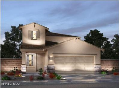 Sahuarita Single Family Home For Sale: 525 N Pecan Sweeper Lane