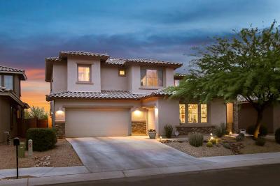 Marana Single Family Home For Sale: 3501 W Tailfeather Drive