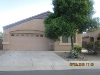 Marana Single Family Home For Sale: 11351 W Cotton Bale Lane