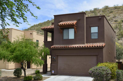 Single Family Home Active Contingent: 7376 E Sabino Terrace Place