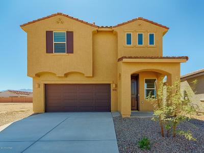 Sahuarita Single Family Home For Sale: 894 E Prairie Field Lane
