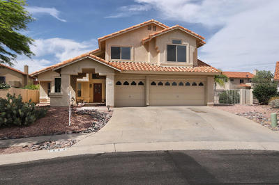 Tucson Single Family Home For Sale: 1060 W Graythorn Place