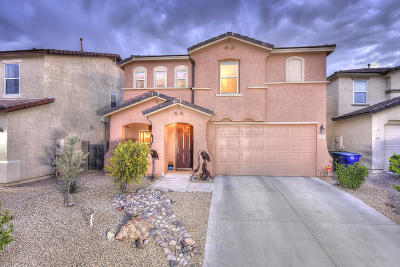 Tucson Single Family Home For Sale: 4068 E Wading Duck Court