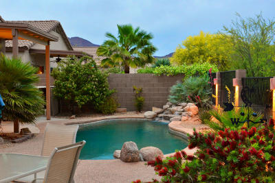 Tucson Single Family Home Active Contingent: 3471 S Desert Motif Road
