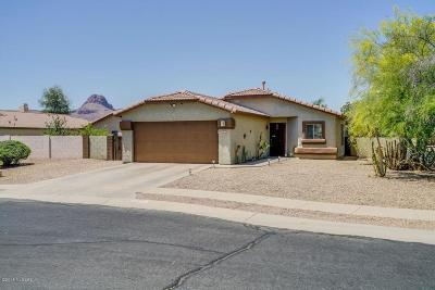 Tucson Single Family Home Active Contingent: 6595 Wilhoit Way