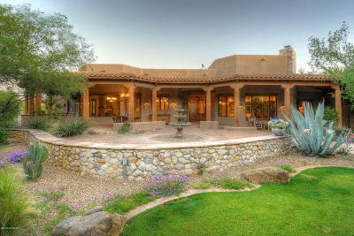 Tucson Single Family Home For Sale: 1410 N Smokey Springs Road