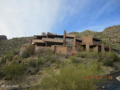 Tucson Single Family Home For Sale: 7207 E Stone Canyon Drive