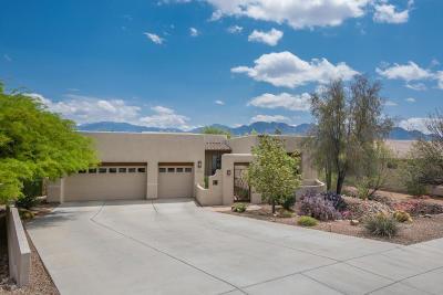Tucson Single Family Home For Sale: 1594 W Copper Ridge Drive