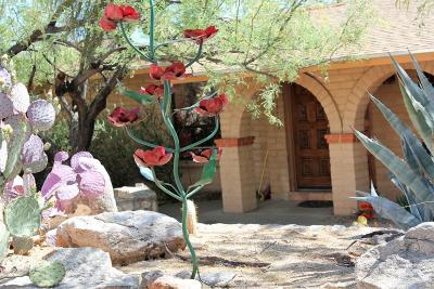 Tucson Single Family Home Active Contingent: 3854 E Marble Peak Place