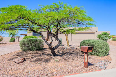 Oro Valley Single Family Home For Sale: 12095 N Copper Spring Trail