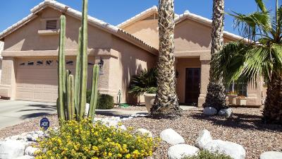 Tucson Single Family Home For Sale: 7759 E Windriver Drive