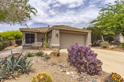 Marana Single Family Home Active Contingent: 12927 N Suizo Mountains Road