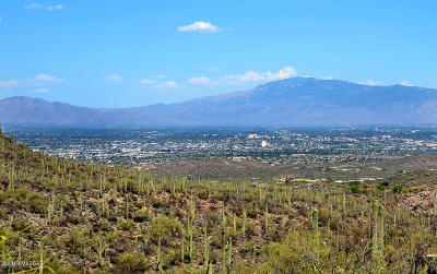 Tucson Residential Lots & Land For Sale: 6521 W Sky Canyon Drive