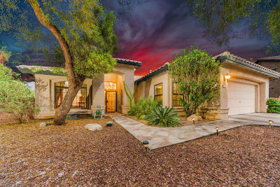 Tucson Single Family Home For Sale: 5402 N Moccasin Trail