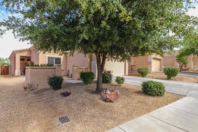 Oro Valley Single Family Home For Sale: 2289 E Stone Stable Drive