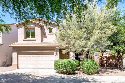 Tucson Single Family Home For Sale: 4644 E Avenida Rio Bruza