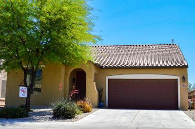 Marana Single Family Home For Sale: 12716 N Brabant Drive