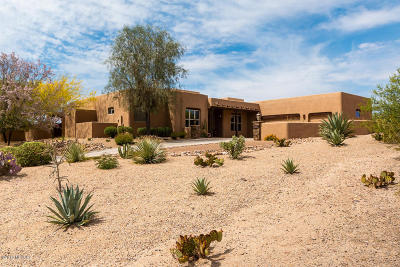 Oro Valley Single Family Home Active Contingent: 10063 N Wild Creek Drive
