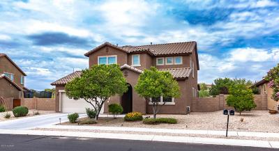 Tucson Single Family Home For Sale: 10835 N Avenida Vallejo