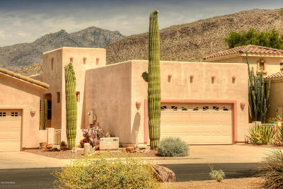 Tucson Single Family Home For Sale: 5107 N Pinnacle Cove Drive