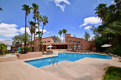 Tucson Condo For Sale: 5051 N Sabino Canyon Road #1217