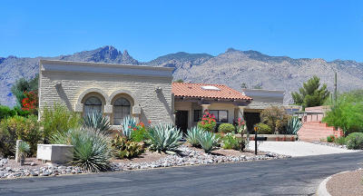 Tucson Single Family Home For Sale: 4091 E Pontatoc Canyon Drive
