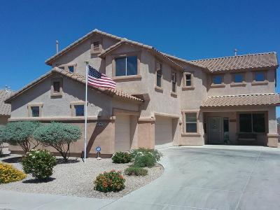 Single Family Home Active Contingent: 10797 S Alley Mountain Drive