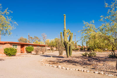Tucson Single Family Home For Sale: 7136 N Magic Lane