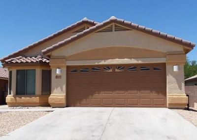 Marana Single Family Home For Sale: 11308 W Burning Sage Street