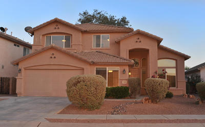 Tucson Single Family Home For Sale: 7379 W Tyler Place