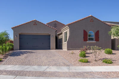 Tucson Single Family Home For Sale: 1084 W Desert Firetail Lane
