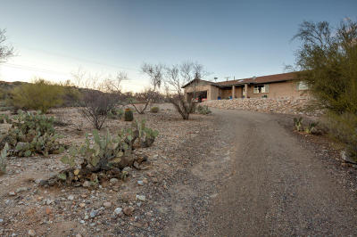 Tucson Single Family Home For Sale: 7375 E Snyder Road