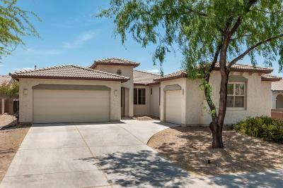Marana Single Family Home Active Contingent: 11649 W Emmer Drive
