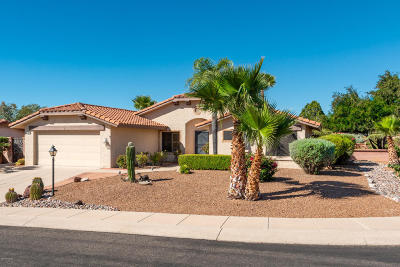 Oro Valley Single Family Home For Sale: 14571 N Line Post Lane