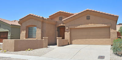 Tucson Single Family Home For Sale: 109 E Brearley Drive