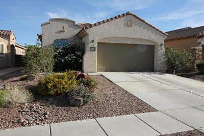 Single Family Home For Sale: 287 W Calle Moncayo