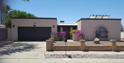 Tucson Single Family Home For Sale: 8834 E 27th Street