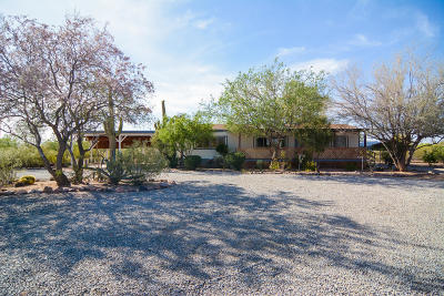 Tucson Single Family Home Active Contingent: 6920 N Pelto