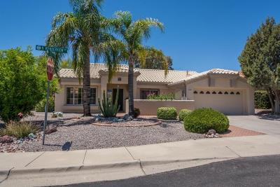 Oro Valley Single Family Home For Sale: 14735 N Wonderview Drive