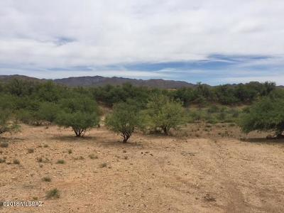 Residential Lots & Land For Sale: S Roundelay Rd 010d #010D