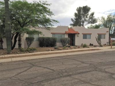 Tucson Single Family Home For Sale: 3901 W Wild Horse Place
