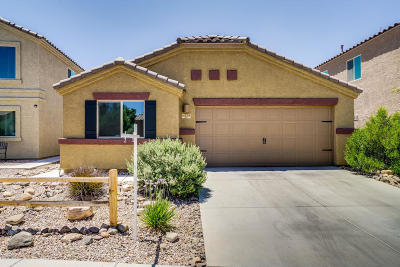 Single Family Home For Sale: 6438 S Vanishing Pointe Way