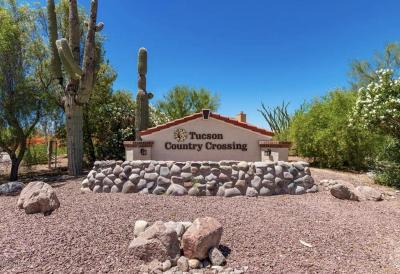 Tucson Single Family Home For Sale: 9585 N Albatross Drive