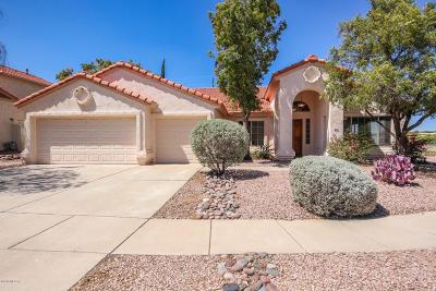 Tucson Single Family Home For Sale: 900 W Antelope Creek Way