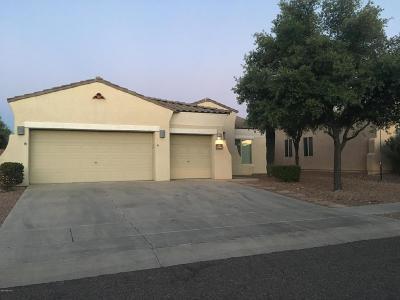 Tucson Single Family Home For Sale: 9308 N Desert Monsoon Place